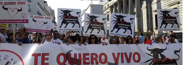 bullfighting-3